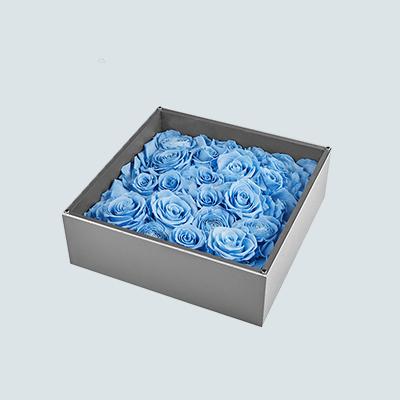 天蓝色的天空花盒