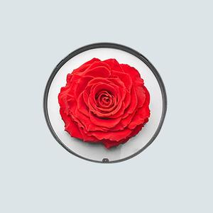 心中的玫瑰永生礼盒